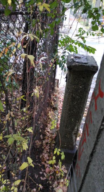 http://www.kolejkamarecka.pun.pl/_fora/kolejkamarecka/gallery/103_1507308558.jpg