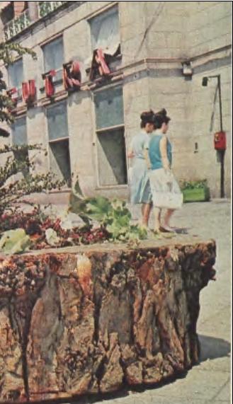 http://www.kolejkamarecka.pun.pl/_fora/kolejkamarecka/gallery/103_1523032412.jpg