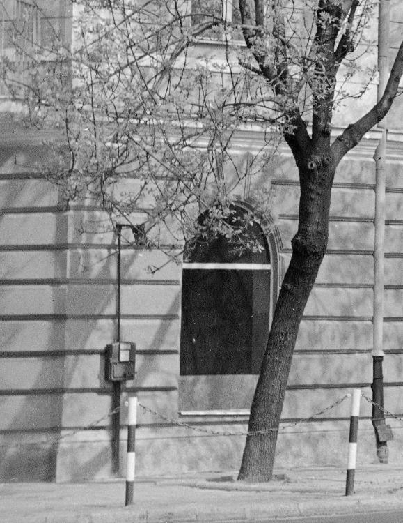 http://www.kolejkamarecka.pun.pl/_fora/kolejkamarecka/gallery/103_1547280453.jpg
