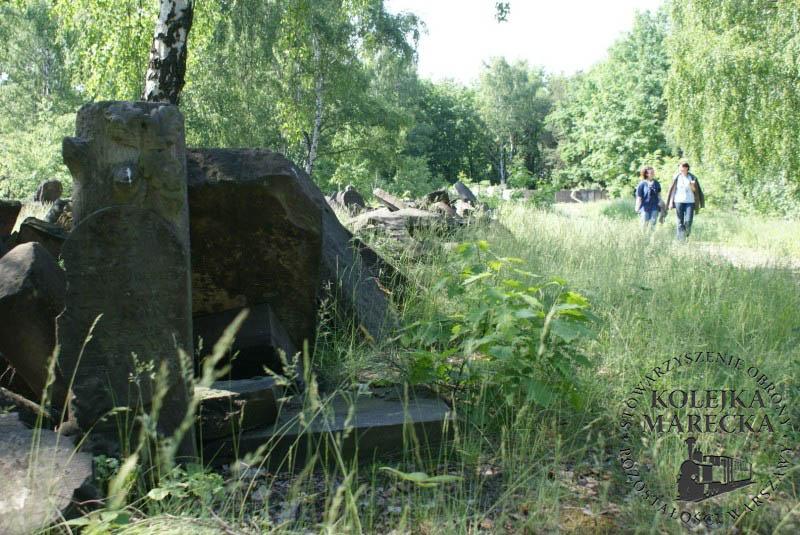 http://www.kolejkamarecka.pun.pl/_fora/kolejkamarecka/gallery/2_1306833121.jpg