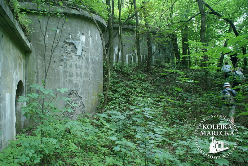 http://www.kolejkamarecka.pun.pl/_fora/kolejkamarecka/gallery/2_1341218522.jpg