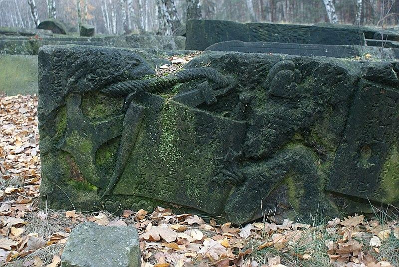 http://www.kolejkamarecka.pun.pl/_fora/kolejkamarecka/gallery/2_1353401506.jpg