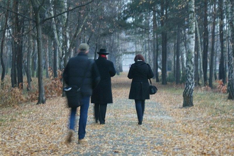 http://www.kolejkamarecka.pun.pl/_fora/kolejkamarecka/gallery/2_1353401561.jpg