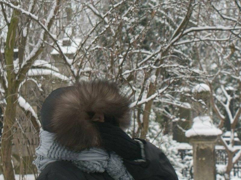 http://www.kolejkamarecka.pun.pl/_fora/kolejkamarecka/gallery/2_1355660859.jpg