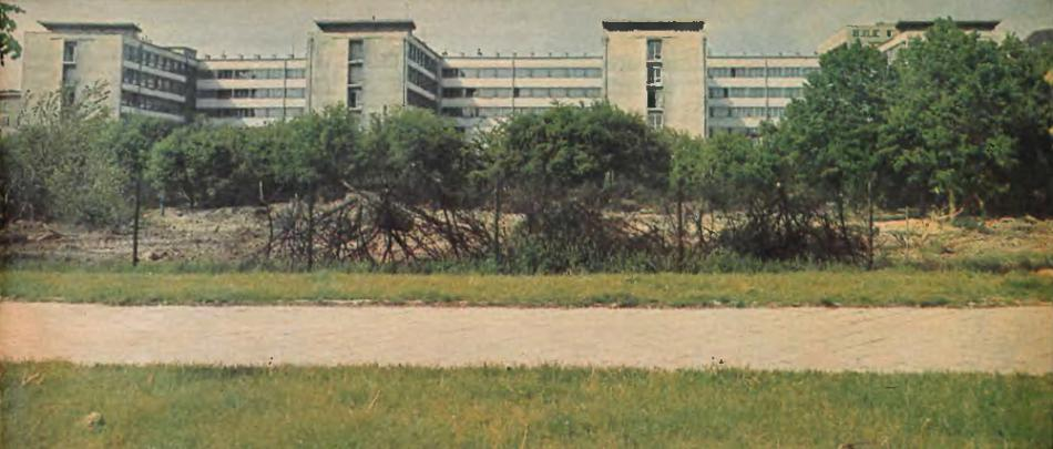 http://www.kolejkamarecka.pun.pl/_fora/kolejkamarecka/gallery/454_1452305117.jpg