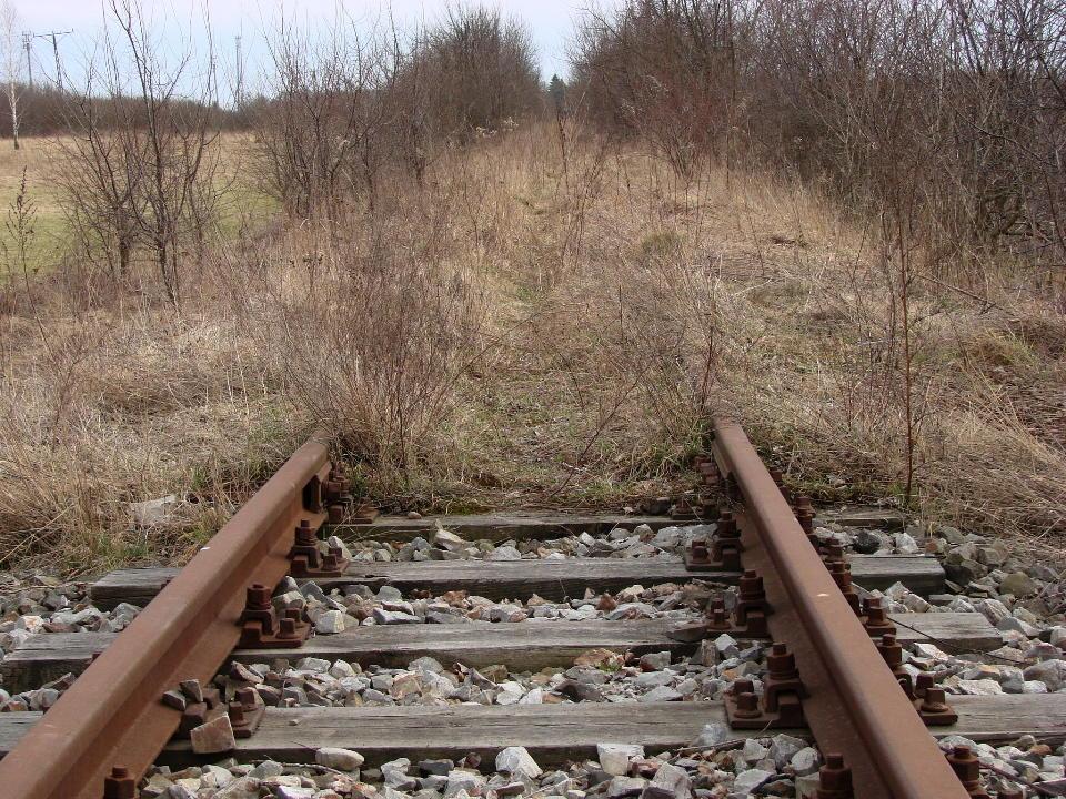 http://www.kolejkamarecka.pun.pl/_fora/kolejkamarecka/gallery/454_1523038145.jpg