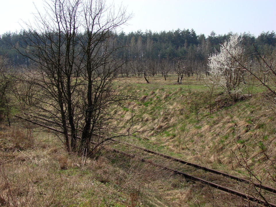 http://www.kolejkamarecka.pun.pl/_fora/kolejkamarecka/gallery/454_1523900467.jpg