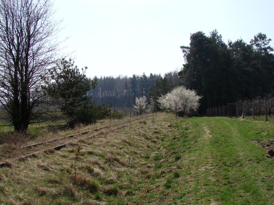 http://www.kolejkamarecka.pun.pl/_fora/kolejkamarecka/gallery/454_1523900875.jpg
