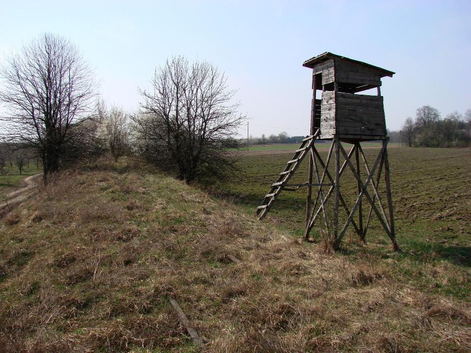 http://www.kolejkamarecka.pun.pl/_fora/kolejkamarecka/gallery/454_1523903552.jpg