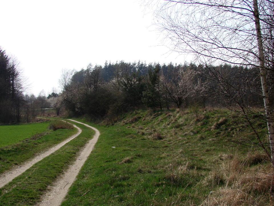 http://www.kolejkamarecka.pun.pl/_fora/kolejkamarecka/gallery/454_1523904326.jpg