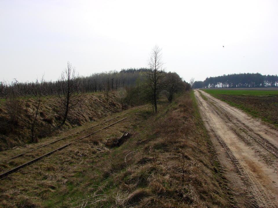 http://www.kolejkamarecka.pun.pl/_fora/kolejkamarecka/gallery/454_1523904975.jpg