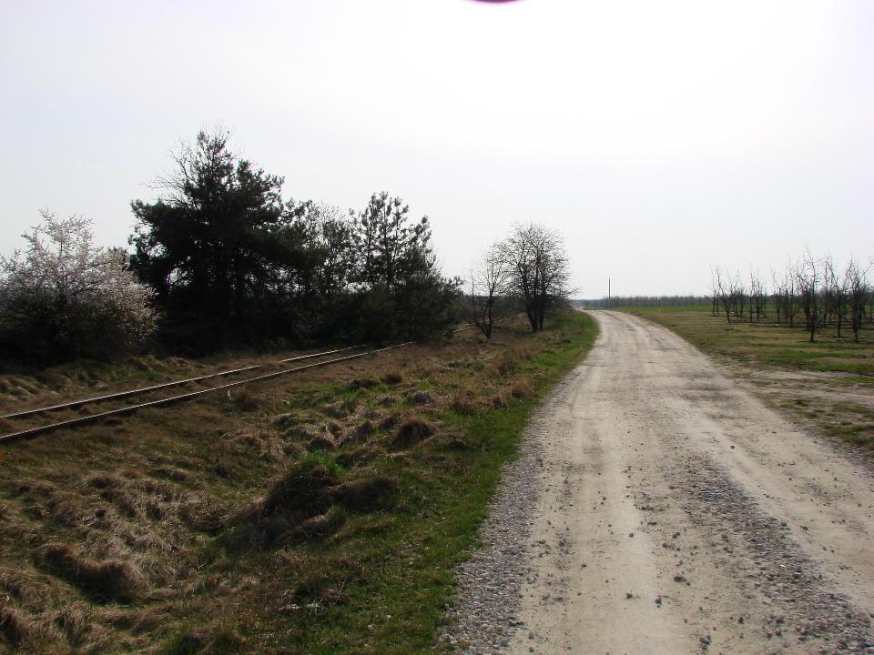 http://www.kolejkamarecka.pun.pl/_fora/kolejkamarecka/gallery/454_1523905039.jpg