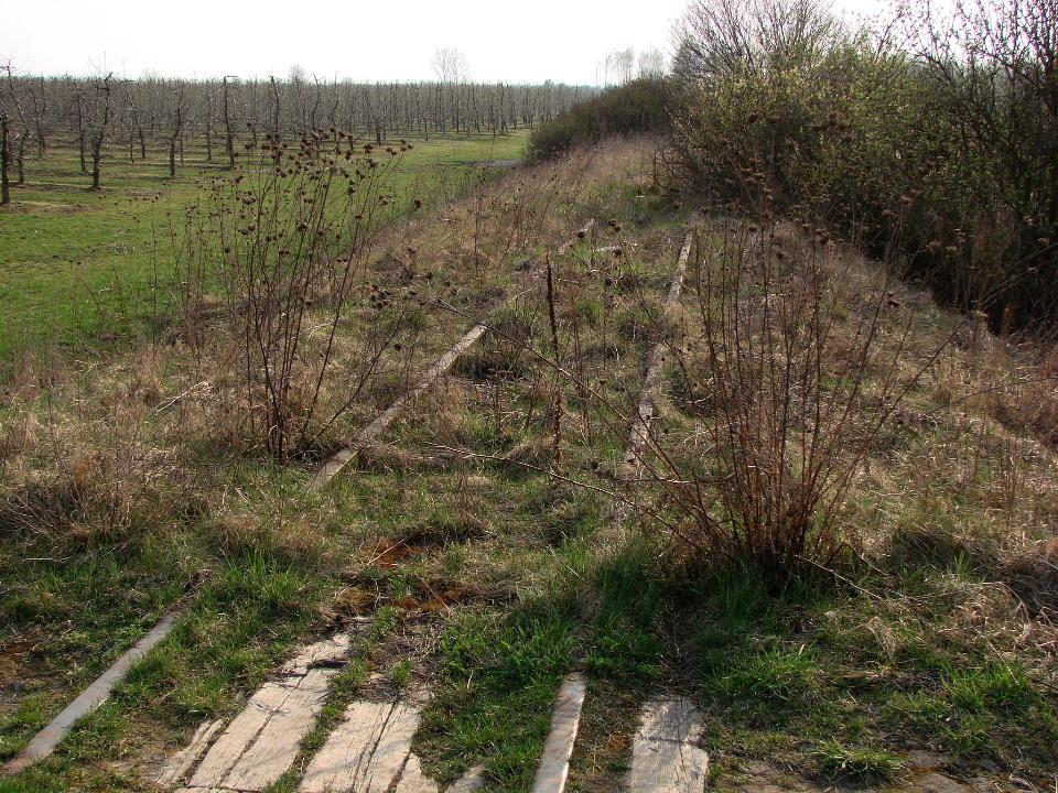 http://www.kolejkamarecka.pun.pl/_fora/kolejkamarecka/gallery/454_1523905326.jpg