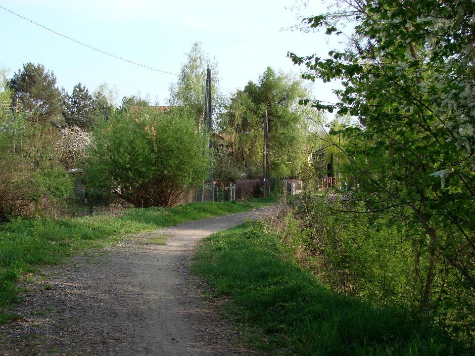 http://www.kolejkamarecka.pun.pl/_fora/kolejkamarecka/gallery/454_1524681429.jpg