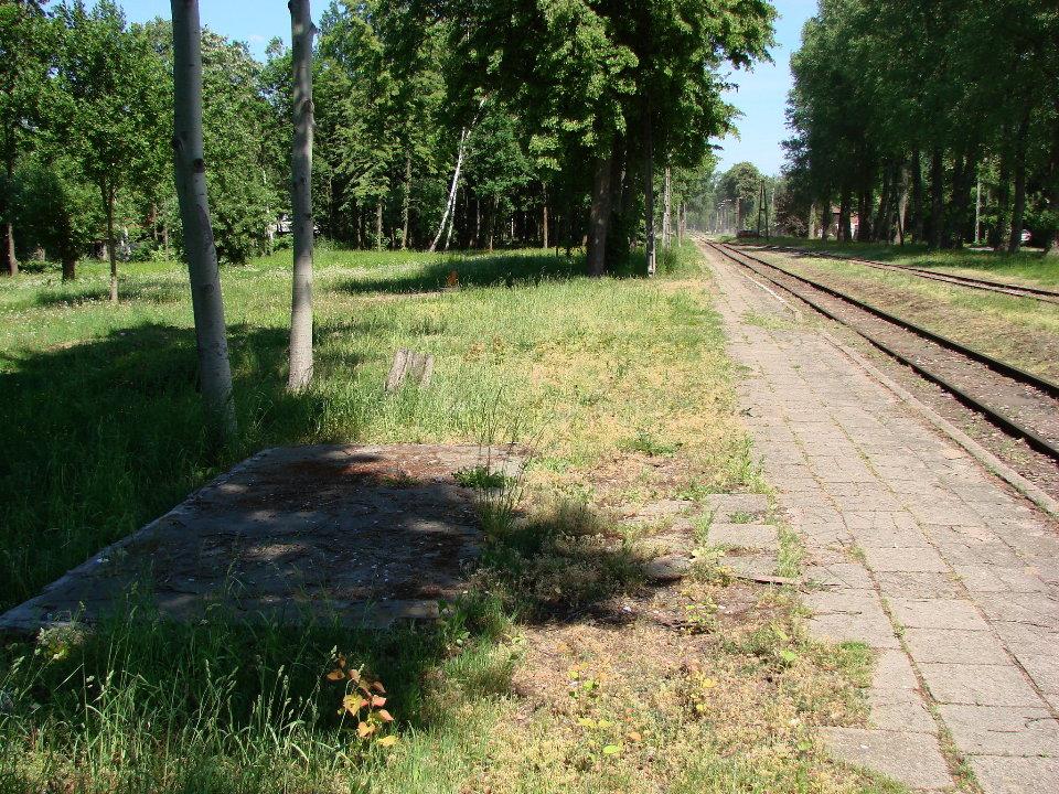 http://www.kolejkamarecka.pun.pl/_fora/kolejkamarecka/gallery/454_1526252328.jpg