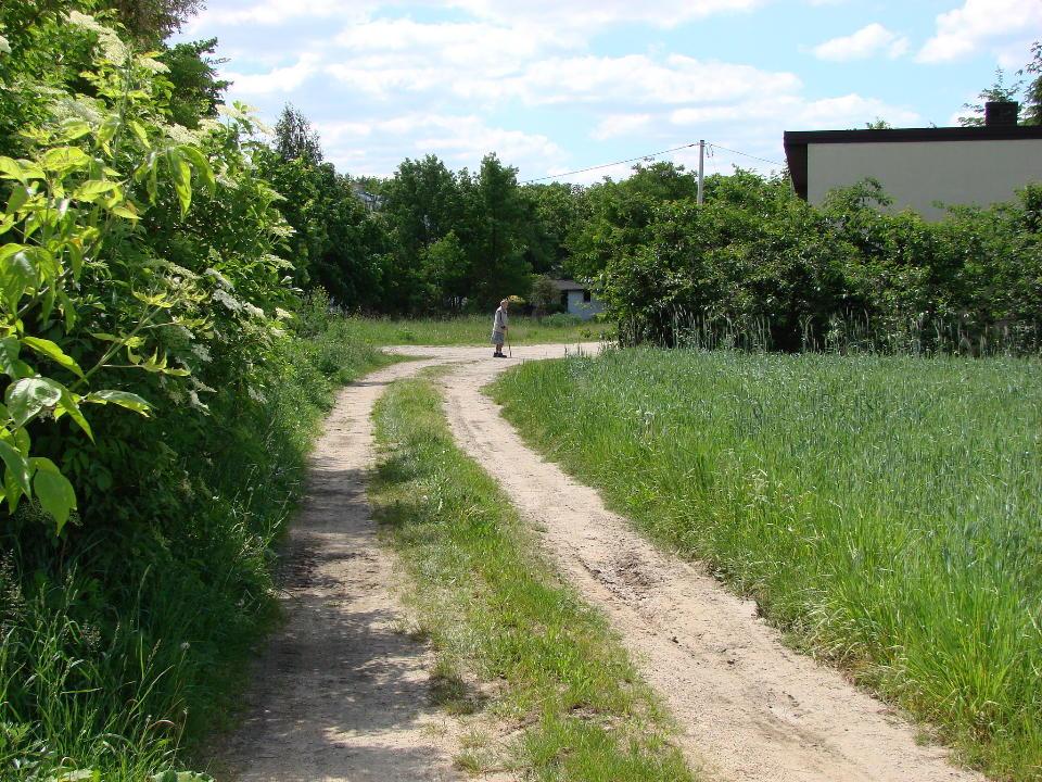 http://www.kolejkamarecka.pun.pl/_fora/kolejkamarecka/gallery/454_1527015488.jpg