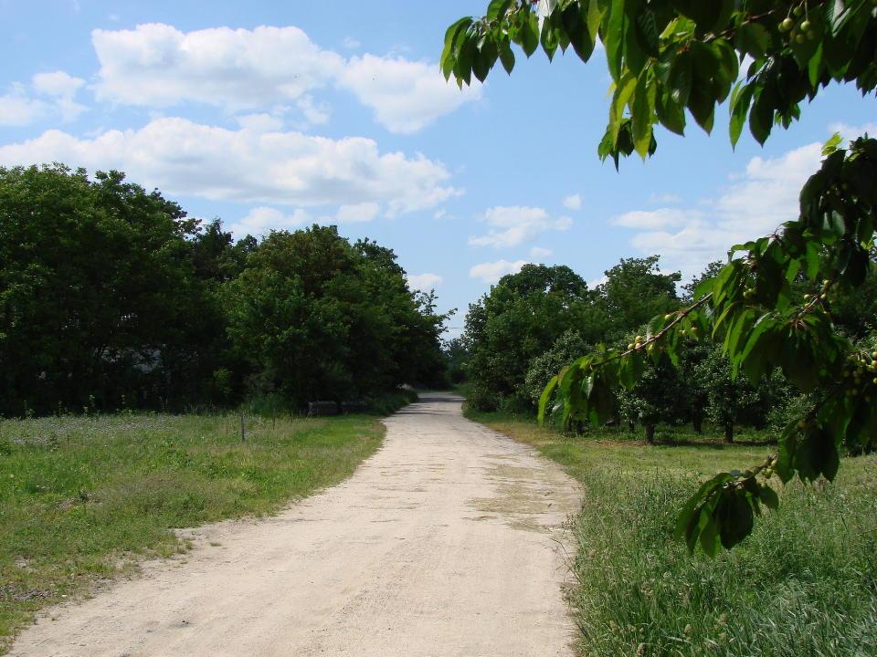 http://www.kolejkamarecka.pun.pl/_fora/kolejkamarecka/gallery/454_1527015512.jpg