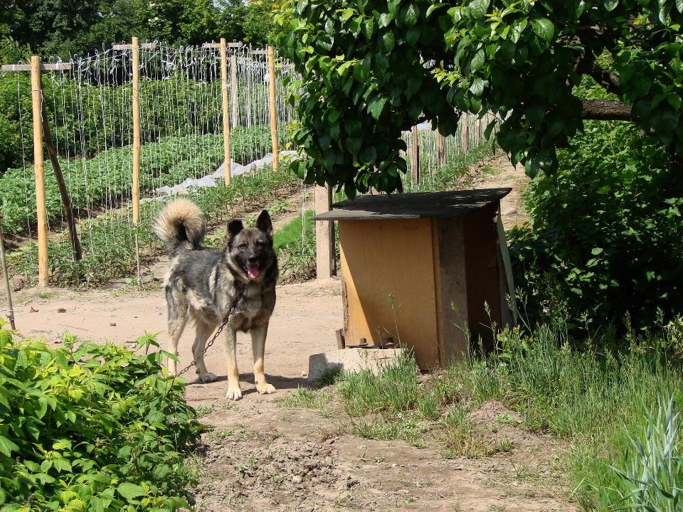 http://www.kolejkamarecka.pun.pl/_fora/kolejkamarecka/gallery/454_1527015881.jpg