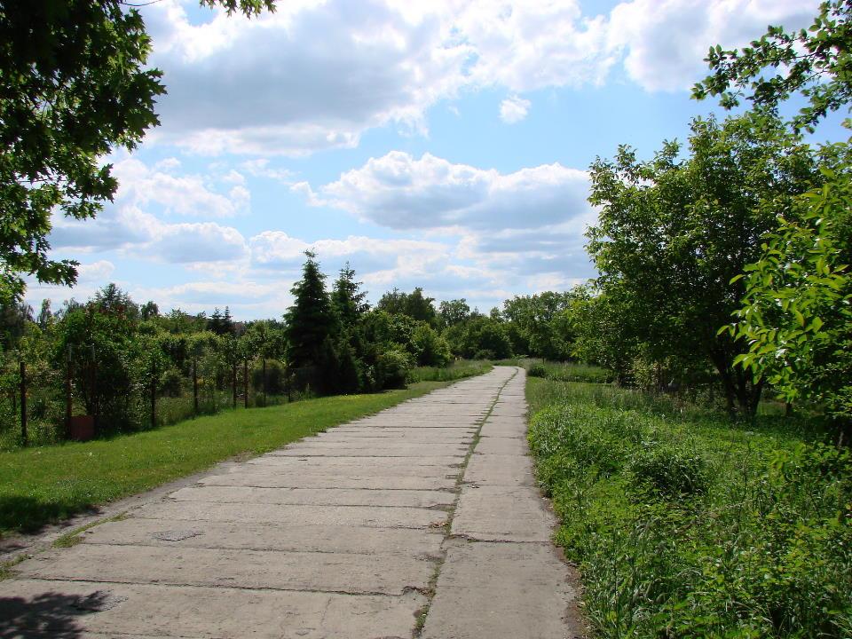 http://www.kolejkamarecka.pun.pl/_fora/kolejkamarecka/gallery/454_1527016463.jpg