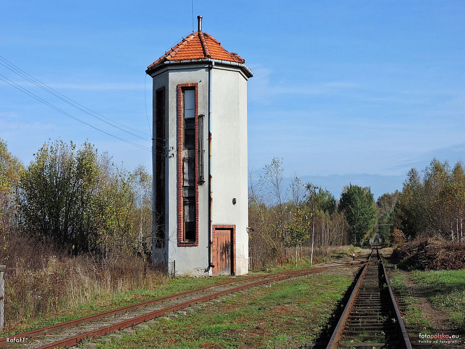 http://www.kolejkamarecka.pun.pl/_fora/kolejkamarecka/gallery/454_1545164396.jpg