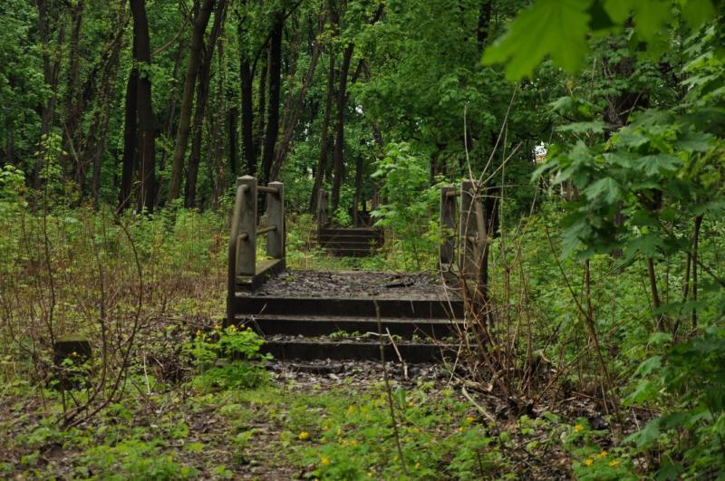 http://www.kolejkamarecka.pun.pl/_fora/kolejkamarecka/gallery/81_1368734211.jpg
