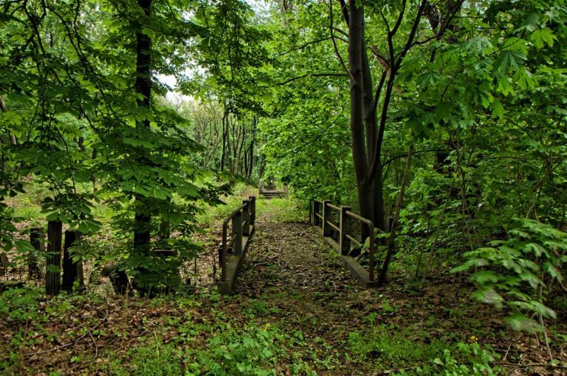 http://www.kolejkamarecka.pun.pl/_fora/kolejkamarecka/gallery/81_1368734244.jpg