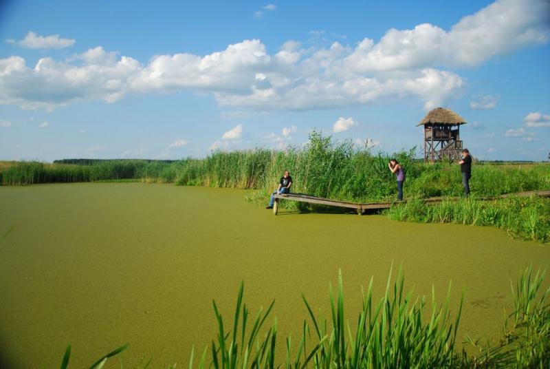 http://www.kolejkamarecka.pun.pl/_fora/kolejkamarecka/gallery/81_1374084426.jpg