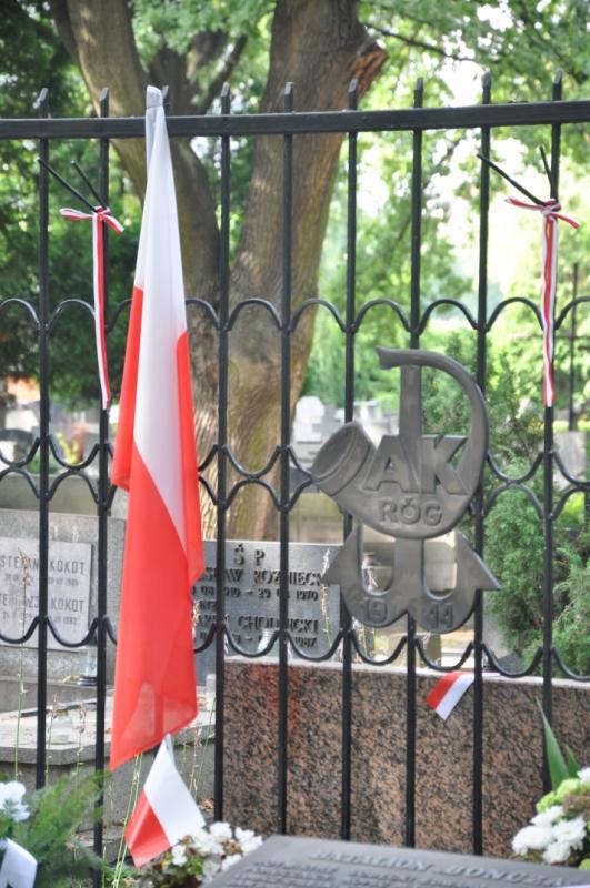 http://www.kolejkamarecka.pun.pl/_fora/kolejkamarecka/gallery/81_1375377042.jpg