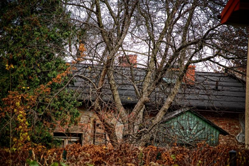 http://www.kolejkamarecka.pun.pl/_fora/kolejkamarecka/gallery/81_1383081889.jpg